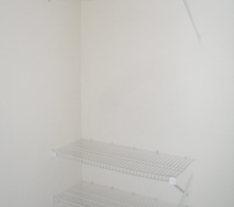 SDC17591